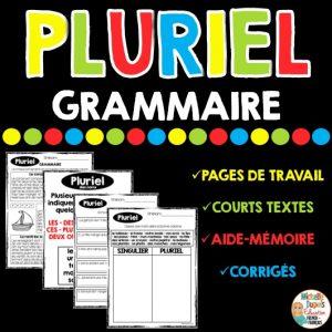 pluriel grammaire